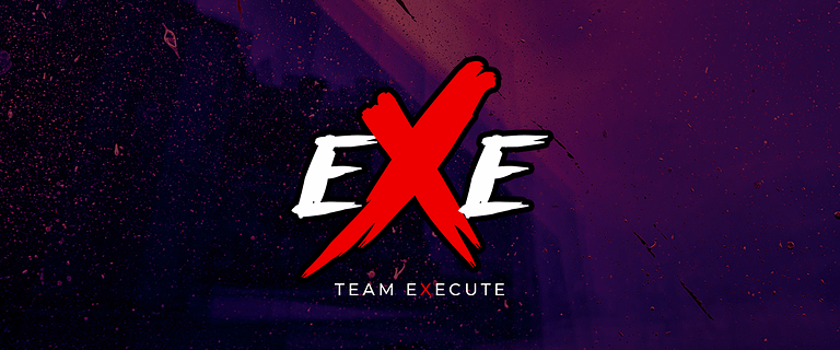 TEAMEXECUTE.ORG is our new secondary domain name